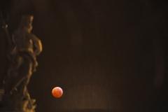 Oss-Marco-Luna-rossa